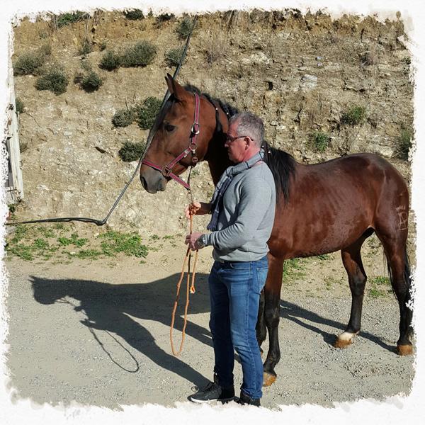 Hovslagare Leif tillsammans med en fuxfärgad häst